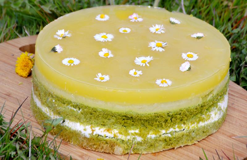 Zelený dort s Agarem z džusu a sedmikráskami